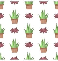 Cactus desert plant vector image
