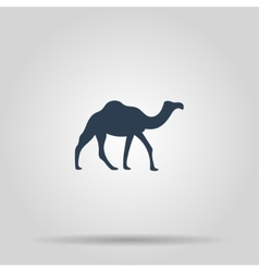 Camel Icon concept for design vector image vector image