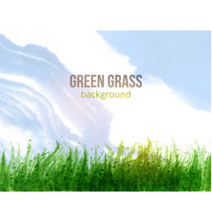 Fresh green grass and blue sky vector
