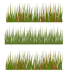 Green grass borders set nature lawn meadow spring vector
