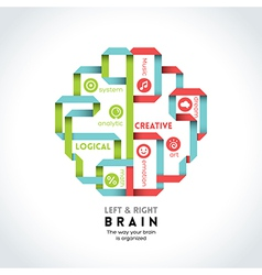 left and right brain function vector image vector image