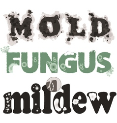 Mold fungus and mildew vector