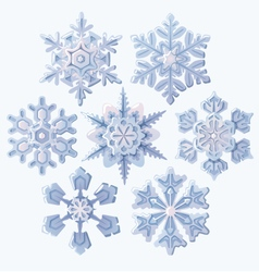 Set of ornate three dimensional snowflakes icons vector image