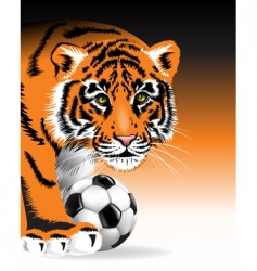 tiger with soccer ball vector image