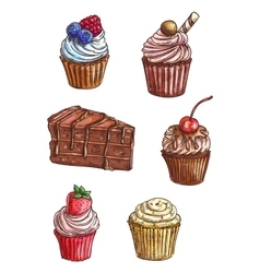 Chocolate cake cupcake sketches with cream fruit vector