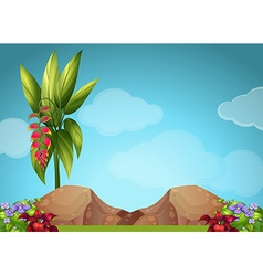 Scene with flowers and rocks vector