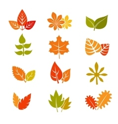 Multicolor autumn leaves flat icons fall vector