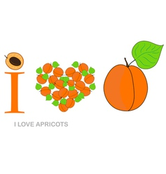 i love apricots vector image vector image
