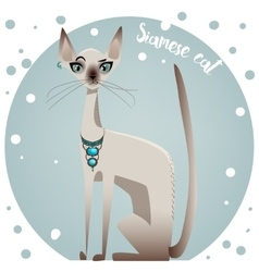 Siamese pedigreed cat vector