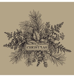 Christmas frame with pine branches holly mistletoe vector
