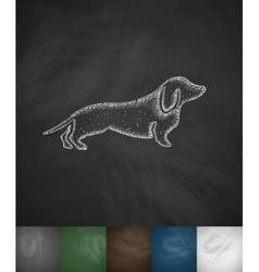German badger-dog icon vector