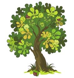 Chestnut tree vector