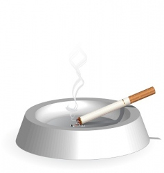 smoke and ash tray vector image