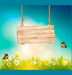 Summer nature background with green grass and vector