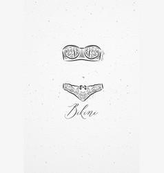 Underwear fashion bikini vector