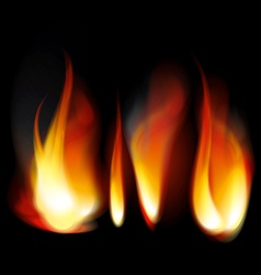 Flame tongues vector