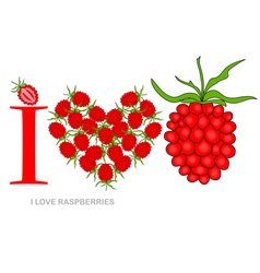 I love raspberries vector