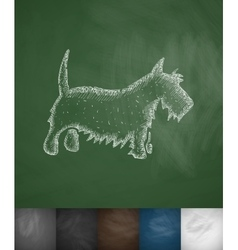 Scottish terrier icon vector