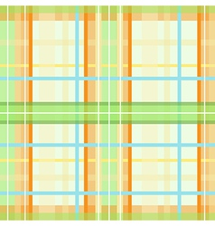 Modern spring plaid pattern vector image