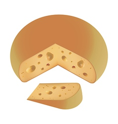 piece of cheese fresh vector image