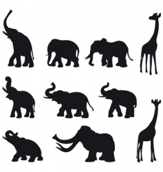elefants mammoth giraffe vector image