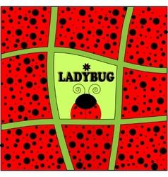 ladybug background invitation card vector image