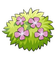 Flower plant vector image