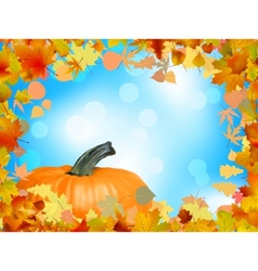 fall leaves with pumpkin vector image