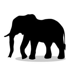 elephant mammal black silhouette animal vector image vector image