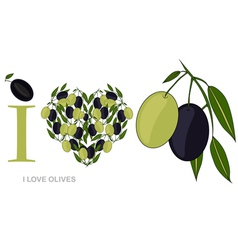 i love olives vector image vector image