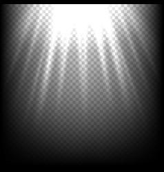 Light rays on black sunbeam scene transparent vector image vector image