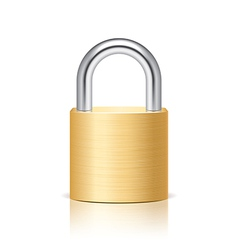object padlock vector image vector image
