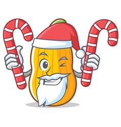 Santa with candy butternut squash mascot cartoon vector
