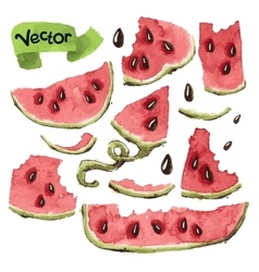 Watermelon slices set vector