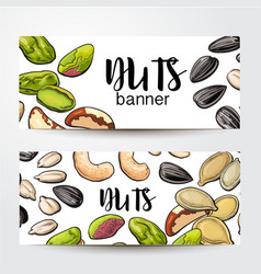 Banners with nuts seeds and place for text vector