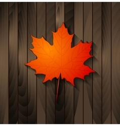 Autumn maple leaf on wooden background vector