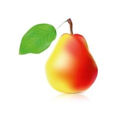 Realistic ripe pear vector image