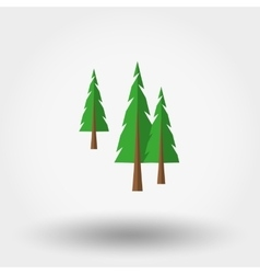 Spruce christmas tree forest icon vector