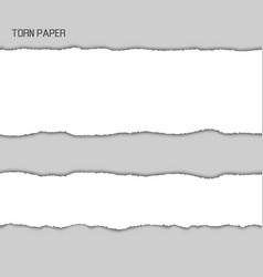 torn paper srtipes vector image