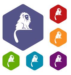 hairy monkey icons set hexagon vector image