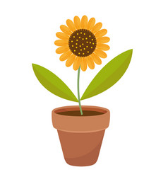 sunflower in a flowerpot icon flat cartoon style vector image