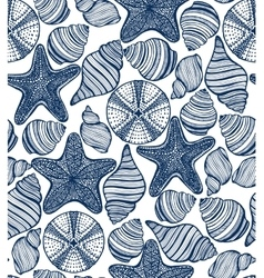 background with shells starfishes urchins vector image