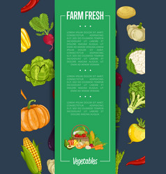 Fresh farm food banner with vegetable vector