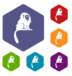 Hairy monkey icons set hexagon vector