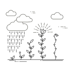 Growing plants card vector