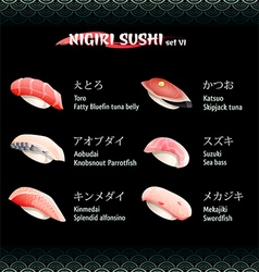 Nigiri sushi VI vector image vector image