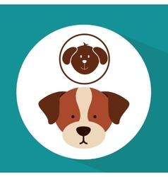 Veterinary dog care icon vector