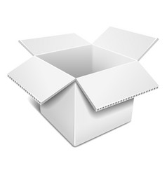 Open white cardboard box vector