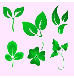 leaves silhouettes vector image