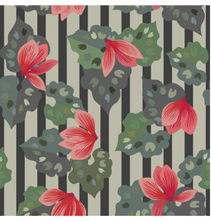 Floral seamless pattern of cyclamen flowers vector